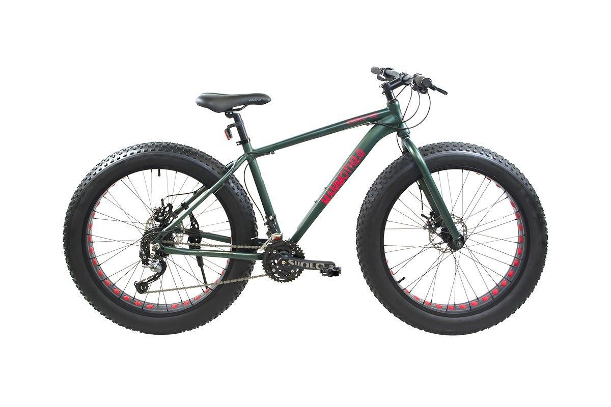 Alton Mammoth 2.0 Review – 27-Speed Mountain Bike